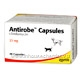 Antirobe Capsules (Clindamycin) 25mg 80 Capsules/Pack