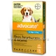 Advocate for Dogs 4-10kg 6 Tubes