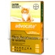 Advocate for Kittens & Small Cats up to 4kg 3 Tubes